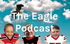 Eagle Podcast Episode 5- Week 11 of the NFL Review